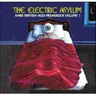 The Electric Asylum