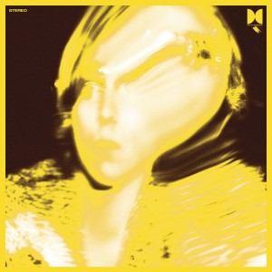 Ty Segall-Twins